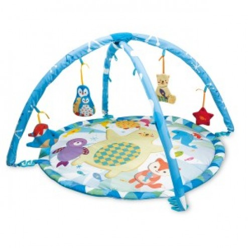 Saltea cu arcade activitati bebe Winfun Fiesta Polara