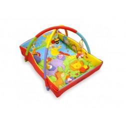 Covoras de joaca pentru bebelusi Baby Mix Q3261C