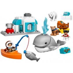 Arctic LEGO DUPLO (10803)