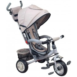 Tricicleta multifunctionala Sunny Steps Grey